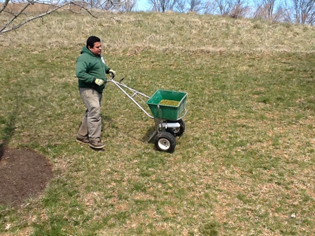 Blake Landscapes senior technician David Alegria applying fertilizer + pre-emergent near Leesburg