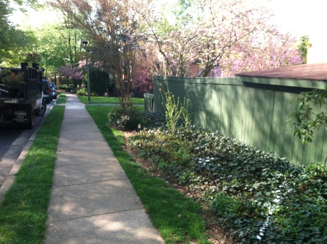 This ivy-filled bed at a Reston-area property had become an eyesore.